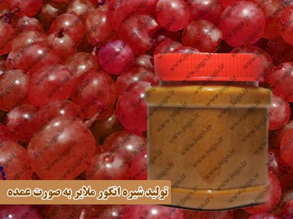 تولید شیره انگور ملایر